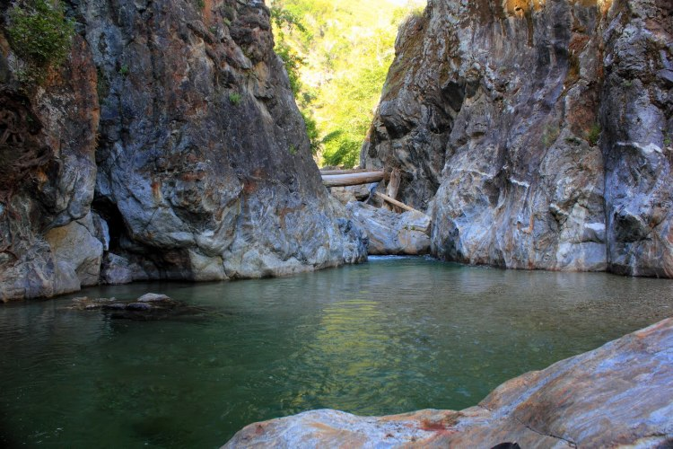 The Best Swimming Holes in the Bay Area…period.
