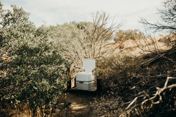 Everything You Need to Know About Composting Toilets