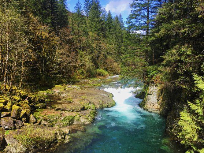 Host Spotlight: Restoring Public Access and Camping at Naked Falls