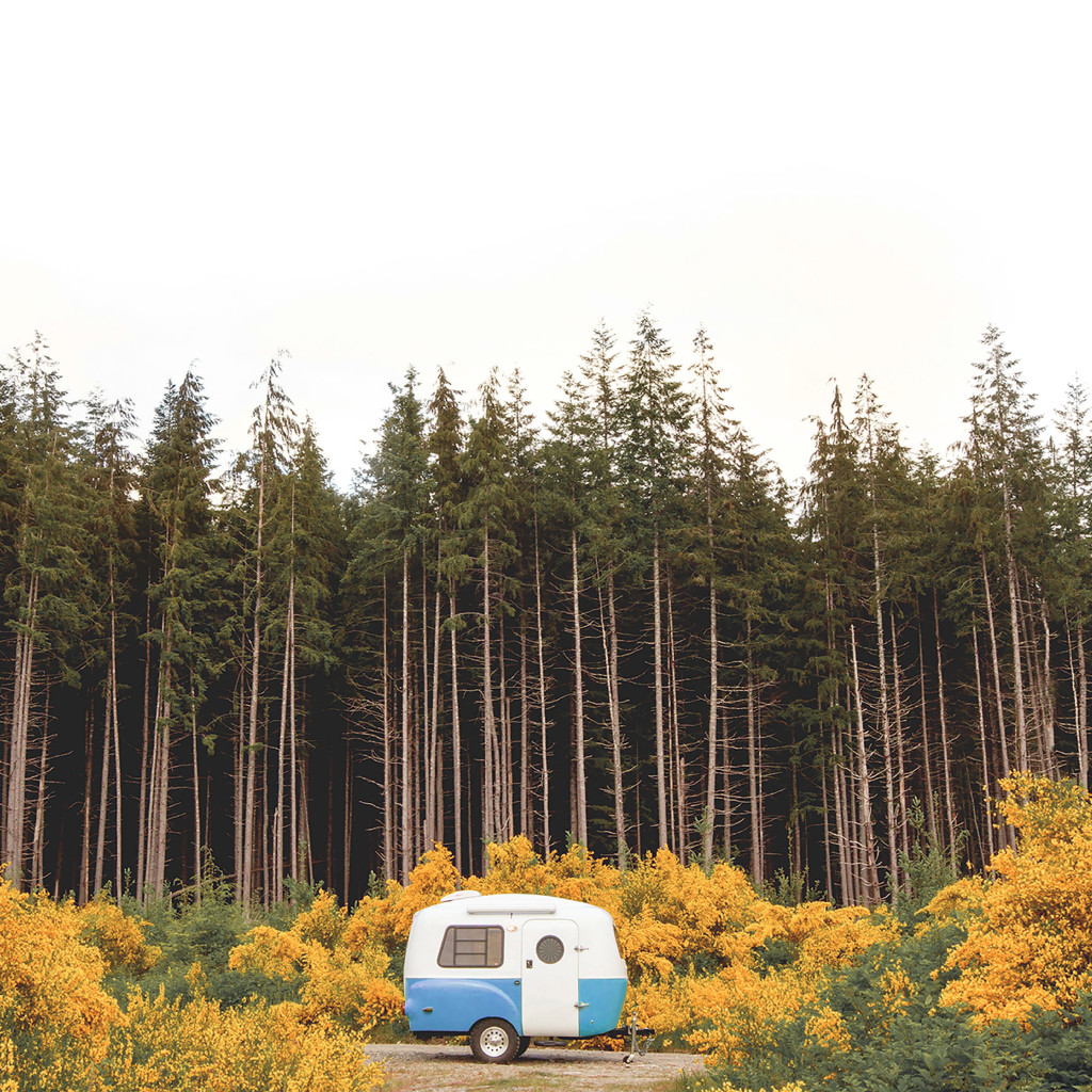 Enter the 2018 Endless Summer Camping Challenge