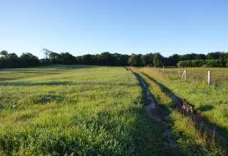 Provision Family Farms
