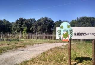 Groovy Hopster Farm