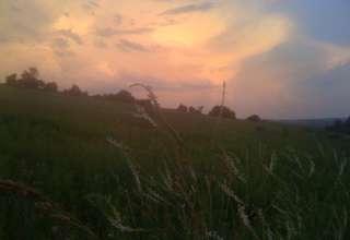 Local Winds Farm