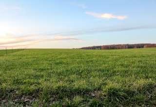 Too Far Out Farm