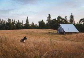 Irish Creek Ranch