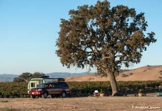 Pianetta Ranch & Winery