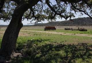 Redcreek Nature Ranch