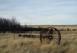 Crane Acres Prairie Camping