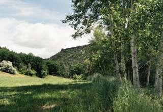 Justesen Ranches