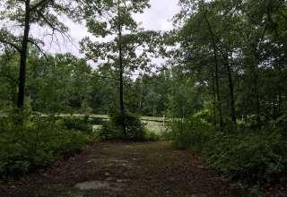 Historic Cedar Dam