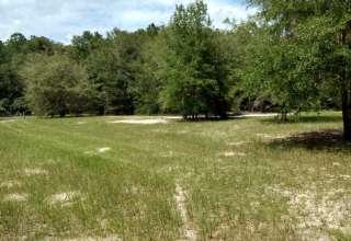 A Dog Dug Farm