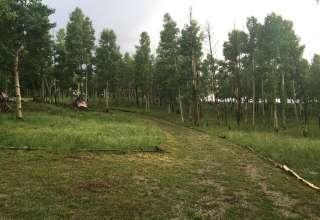 Altitude Worx Adventure Camp