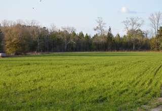 Rolling Oaks Farm