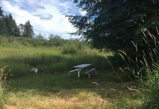 Malaney Creek Farm