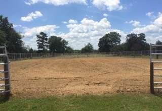 Caddo Equestrian