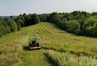 Hillendale Farm