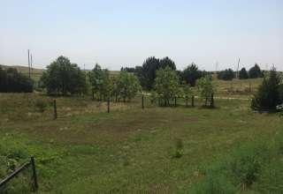 Friendly Fields Camping