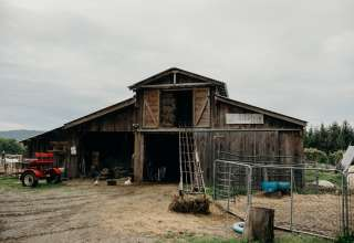 Misty Mountain Farm