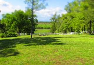 Burdoc Farms