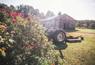 Blue Creek Farm