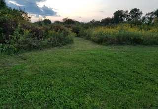 Applegate Road Pond Grove