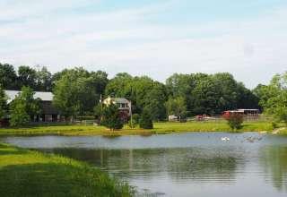 Hawk Shadow Farm