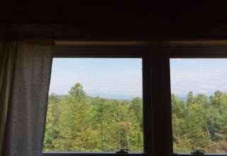 Spruce Mountain Nest