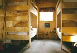 Mooseshroom Cabin