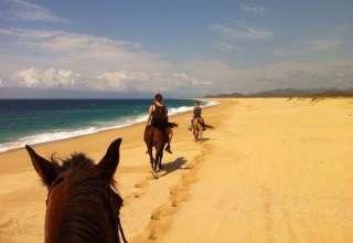 Rancho Sol y Mar Beach EcoStays
