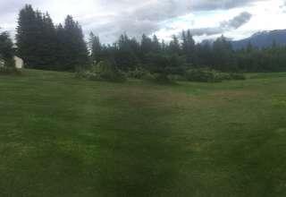Single Tree Acres
