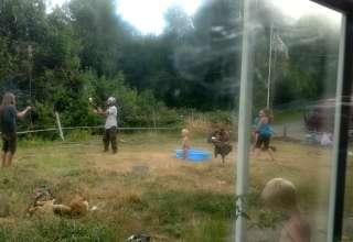 Stud Monkeys' Farms