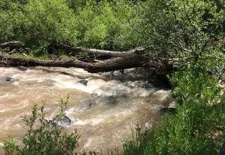 Stoney creek Land