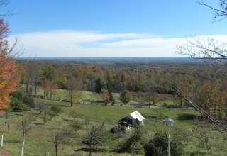 Berry Fields Farm