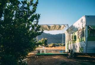 Pinnacle Farms South