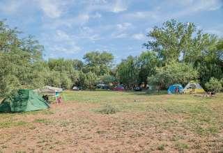 Camp Avalon