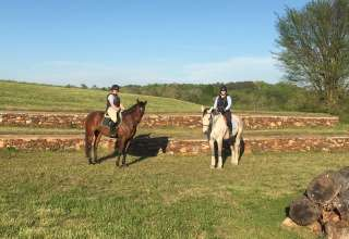 Stoneridge Equestrian