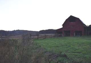 Dragonfly Farms