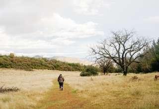 WRITER'S CABIN on Lore Mountain