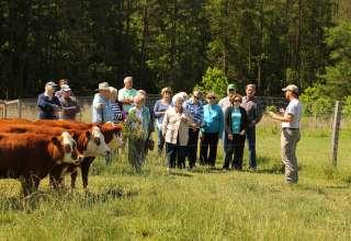 Bowers Farm