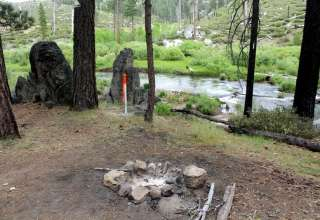 Golden Grizzly Campsites