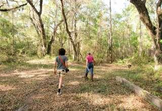 Shady Grove Preserve