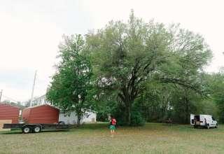 Old White House Land
