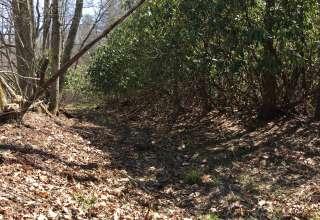 Laurel Fork Hideout