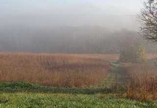 Draco Hill Farm