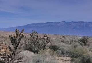 Our Desert Homestead