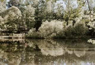 The Pond on Rock Springs Road