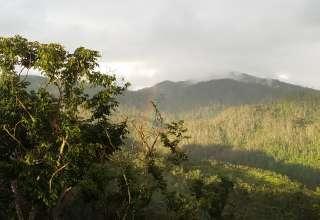 Hacienda Guaraguao El Yunque