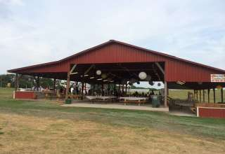Denver Downs Farm Campsites