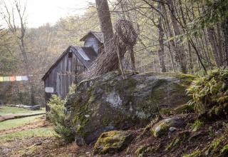 The Wonderland Mill