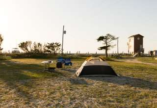 Shady Soundside Surf Camp